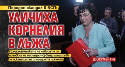 Пореден скандал в БСП: Уличиха Корнелия в лъжа (ДОКУМЕНТИ)