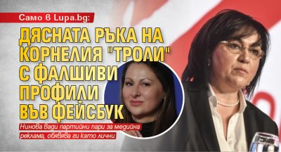 """Само в Lupa.bg: Дясната ръка на Корнелия """"троли"""" с фалшиви профили във фейсбук"""