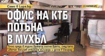 Само в Lupa.bg: Офис на КТБ потъна в мухъл (СНИМКИ)