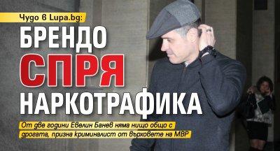 Чудо в Lupa.bg: Брендо спря наркотрафика