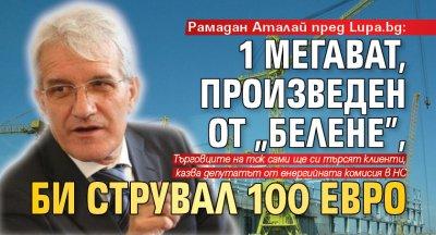 """Рамадан Аталай пред Lupa.bg: 1 мегават, произведен от """"Белене"""", би струвал 100 евро"""