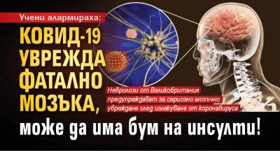 Учени алармираха: Ковид-19 уврежда фатално мозъка, може да има бум на инсулти!