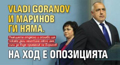 Vladi Goranov и Маринов ги няма. На ход е опозицията