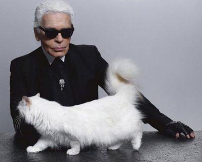 Котката на Лагергелд наследи 2,5 милиона паунда