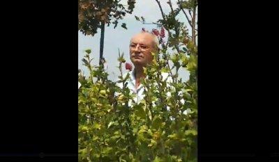Куриоз! Ахмед Доган си лафи с протестиращите (ВИДЕО)