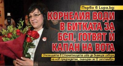Първо в Lupa.bg: Корнелия води в битката за БСП, готвят й капан на вота