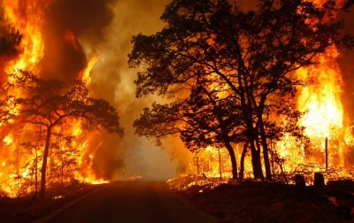ПАЗЕТЕ СЕ! Екстремна опасност от пожари