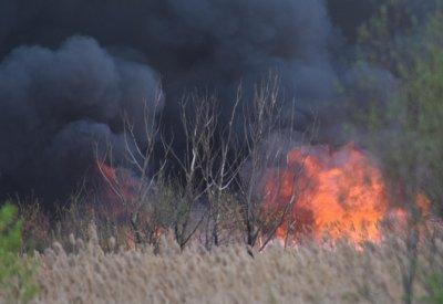 Гора пламна край Хасково