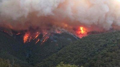 Огнен ад: Огромен пожар захапа Сливен, Нова Загора, Котел и Твърдица