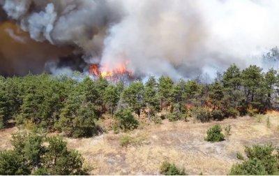 Браво, пожарникари! Огънят в Хасковско е под контрол
