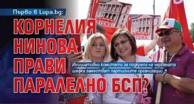 Първо в Lupa.bg: Корнелия Нинова прави паралелно БСП?
