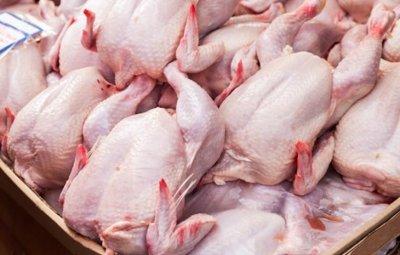 Драстичен ръст на сигналите за заразено със салмонела полско пилешко месо