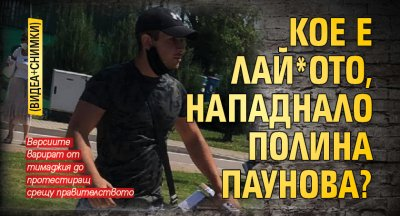 Кое е лай*ото, нападнало Полина Паунова? (ВИДЕА+СНИМКИ)