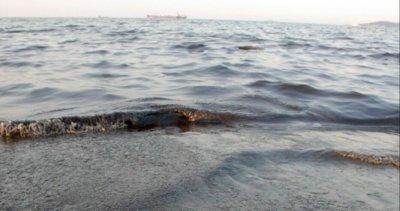 Морето взе поредната си жертва: Извадиха удавник на Арапя
