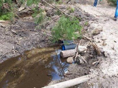 Уволниха шеф на Горското заради калта от чешмите в Рибново