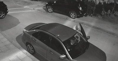 Вандали трошат коли в Стара Загора