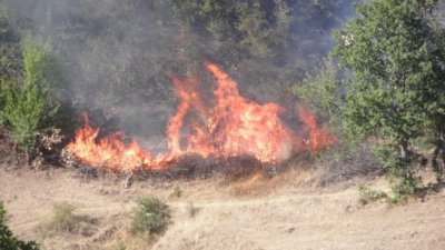Пожар пълзи към с. Драгомир