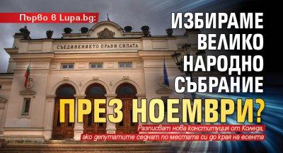 Първо в Lupa.bg: Избираме Велико народно събрание през ноември?