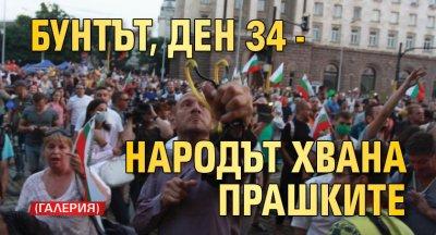 Бунтът, ден 34 - народът хвана прашките (ГАЛЕРИЯ)