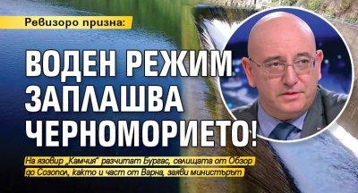 Ревизоро призна: Воден режим заплашва Черноморието!