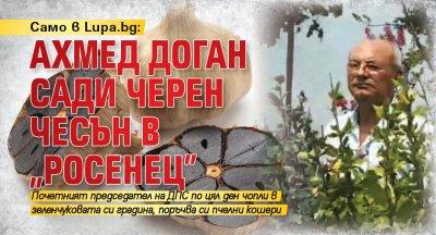 """Само в Lupa.bg: Ахмед Доган сади черен чесън в """"Росенец"""""""