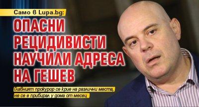 Само в Lupa.bg: Опасни рецидивисти научили адреса на Гешев