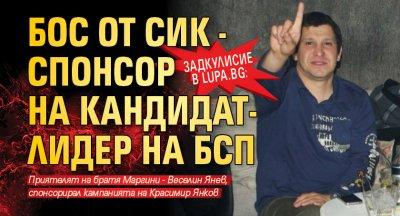 Задкулисие в Lupa.bg: Бос от СИК - спонсор на кандидат-лидер на БСП