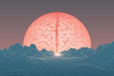 Мозъкът на човека е по-сложен от компютър