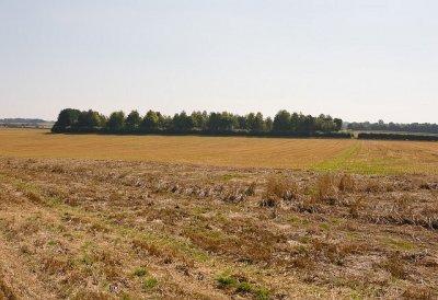 Откриха труп в полето край Суходол