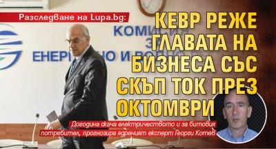 Разследване на Lupa.bg: КЕВР реже главата на бизнеса със скъп ток през октомври