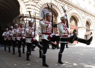 Смяната на караула събра столичани пред президентството (ГАЛЕРИЯ)