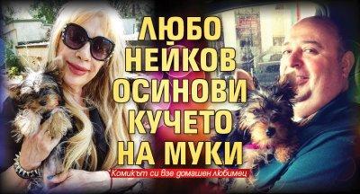Любо Нейков осинови кучето на Муки