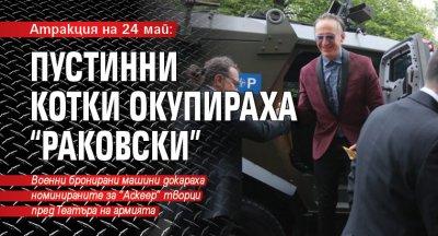 """Атракция на 24 май: Пустинни котки окупираха """"Раковски"""" (ГАЛЕРИЯ)"""