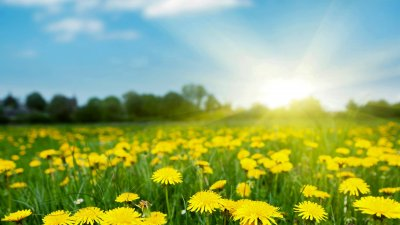 Слънце и облаци ще се редуват в почивните дни