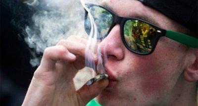 Пушещите канабис подрастващи изостават умствено