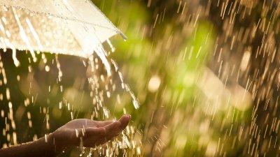 Чака ни дъждовен и хладен вторник