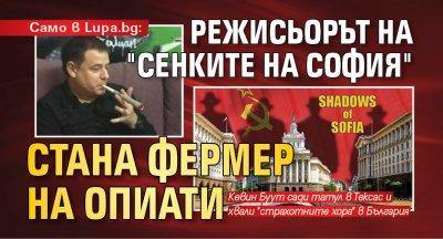 """Само в Lupa.bg: Режисьорът на """"Сенките на София"""" стана фермер на опиати"""