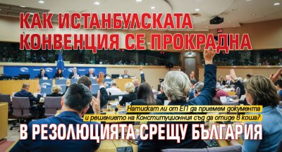 Как Истанбулската конвенция се прокрадна в резолюцията срещу България