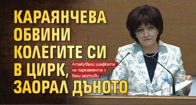 Караянчева обвини колегите си в цирк, заорал дъното