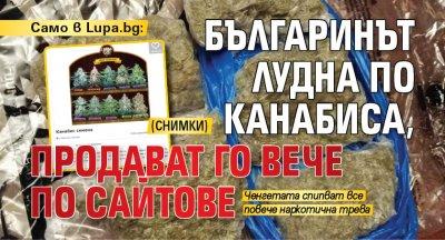 Само в Lupa.bg: Българинът лудна по канабиса, продават го вече по сайтове (СНИМКИ)