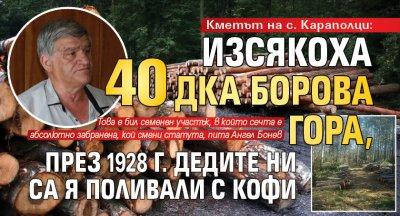Кметът на с. Караполци: Изсякоха 40 дка борова гора, през 1928 г. дедите ни са я поливали с кофи
