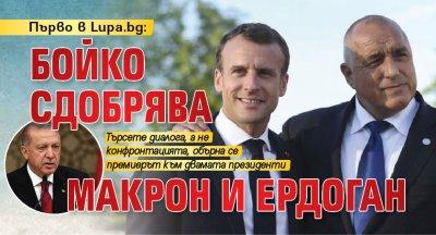 Първо в Lupa.bg: Бойко сдобрява Макрон и Ердоган