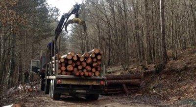 Трагедия: Камион с дърва се обърна и премаза 50-годишен мъж