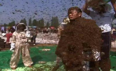 Луд: Мъж се покри с почти 64 кг пчели за рекорд на Гинес