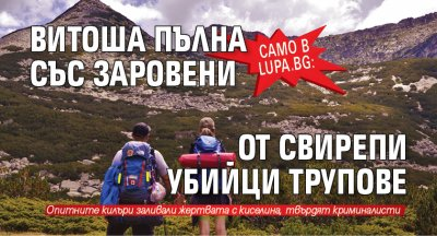 Само в Lupa.bg: Витоша пълна със заровени от свирепи убийци трупове