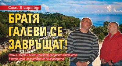 Само в Lupa.bg: Братя Галеви се завръщат!