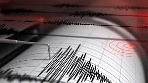 Земетресения стреснаха Албания