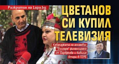 Разкритие на Lupa.bg: Цветанов си купил телевизия