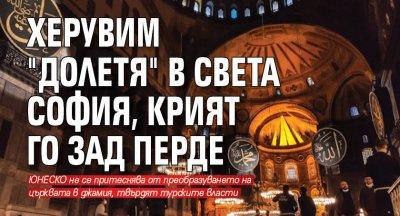 "Херувим ""долетя"" в Света София, крият го зад перде"