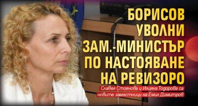 Борисов уволни зам.-министър по настояване на Ревизоро